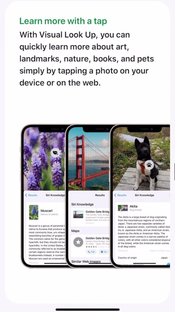 ios 15 aparat rozpoznawanie zdjęć